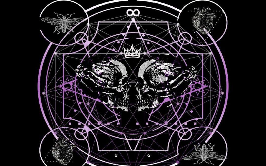"BARBARA BLACK – ""Love, Death & Flies"" **REVIEW**"